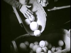 Orangen-aus-Zitronen-new.00_07_15_09.Immagine021